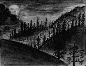 Deep_Dark_Woods_2_by_khantheripper