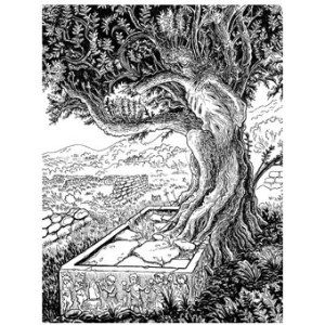 book_cover_tree-340x340