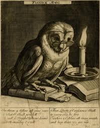 OwlBooksimages